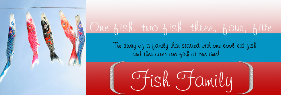 The Five Fish header image