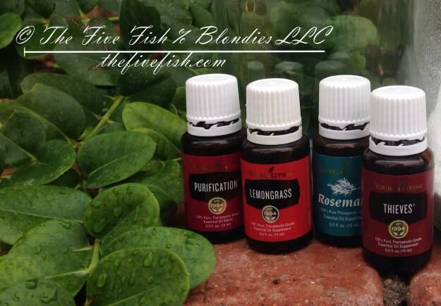Homemade stainless steel cleaner, homemade toxin free cleaners,Essential oils for DIY all purpose cleaner