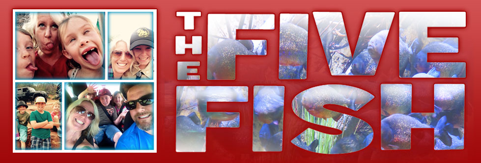 The Five Fish