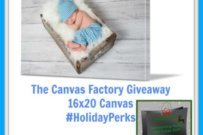 Photos into Art with Canvas Factory